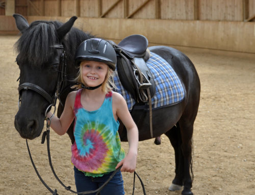 Lasting benefits seen from horseback riding therapy