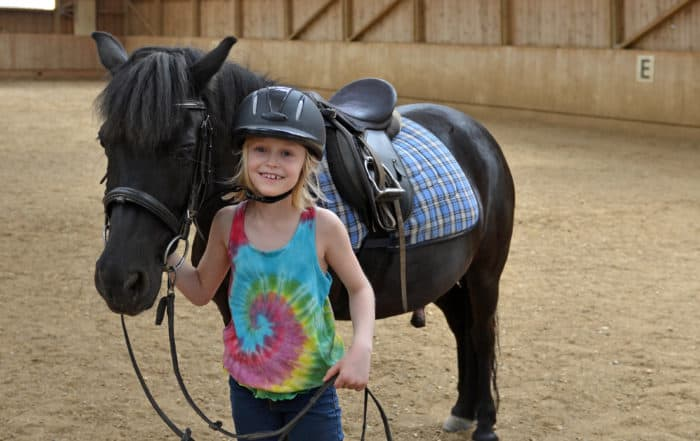 horse therapy, horse therapy autism